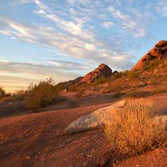 Temporary Staffing agencies in Phoenix