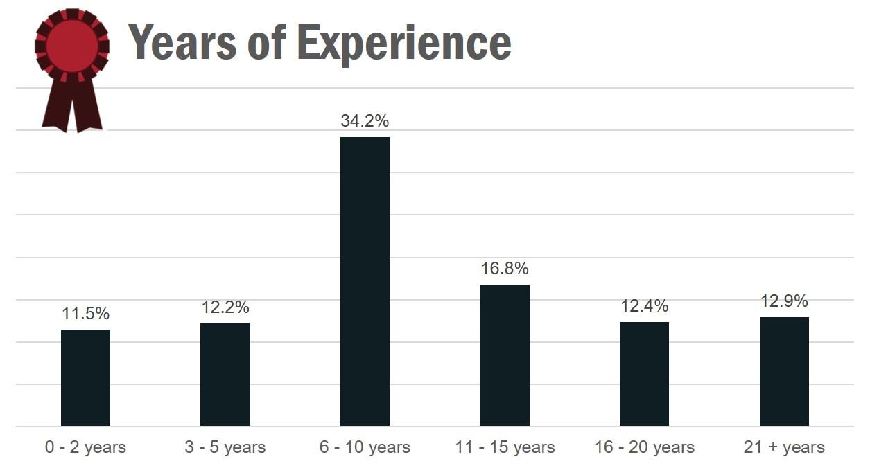 Data_Analysts_Experience.jpg
