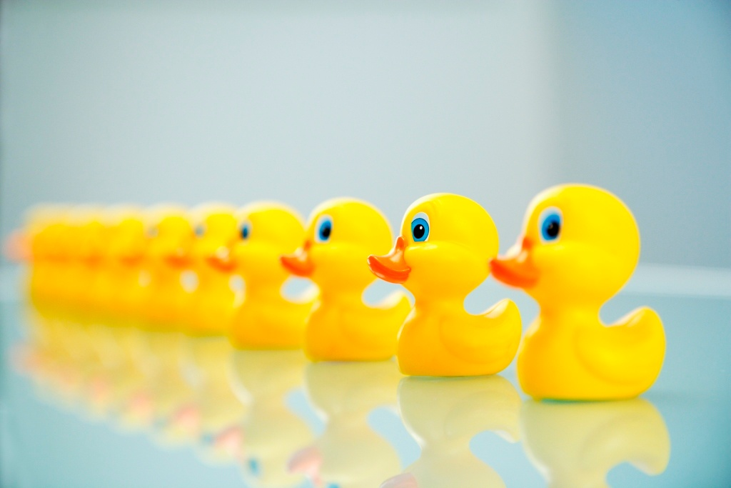 Get your ducks in a row when you switch your MSP