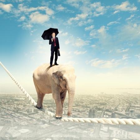 Elephant_tightrope_business_man_Yoh_blog.jpg
