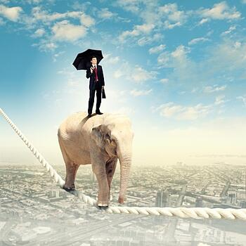 Elephant_tightrope_business_man_Yoh_blog.jpg