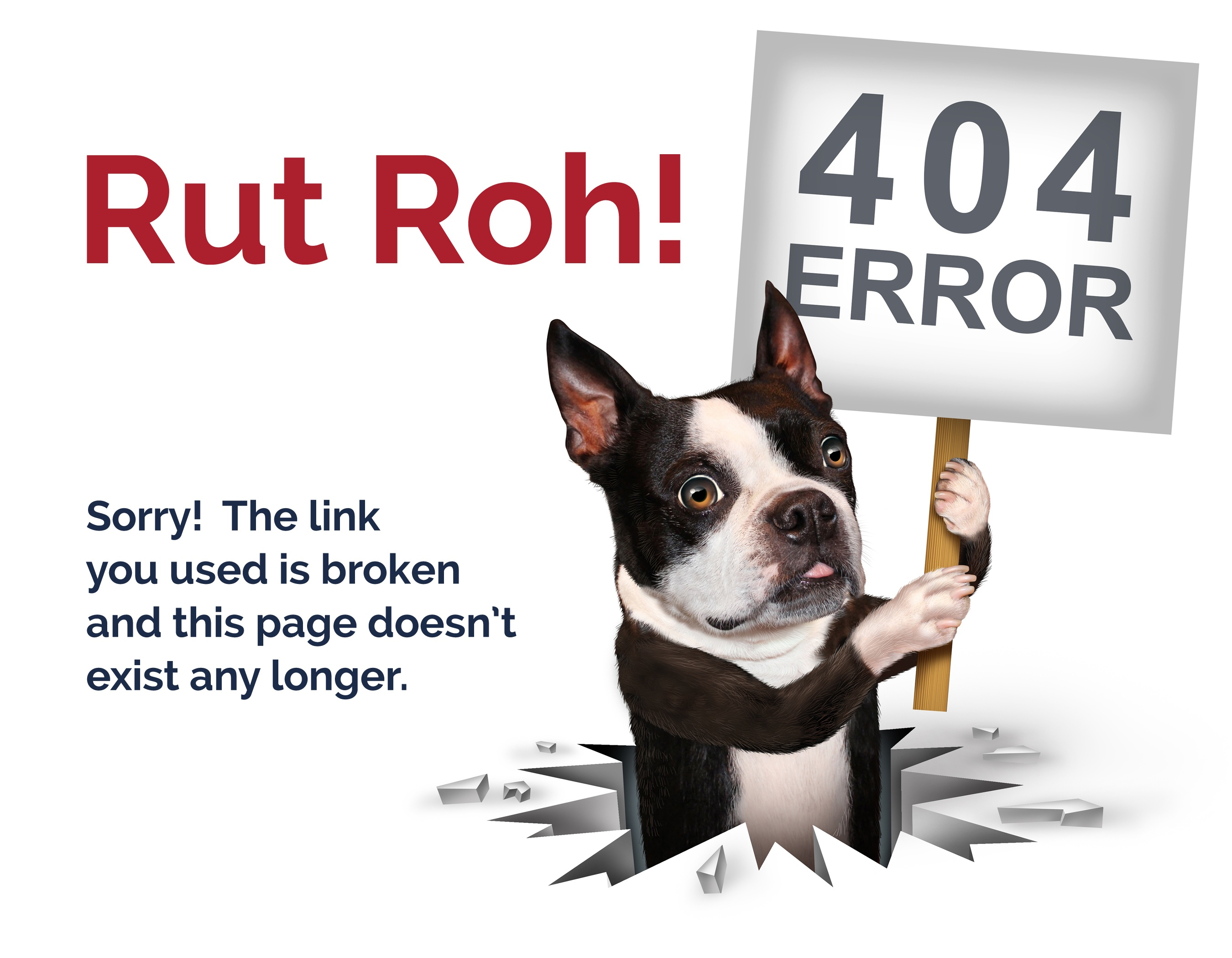 404errorpage_dog2.jpg