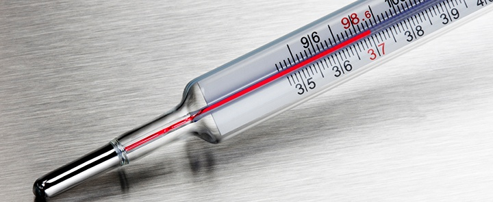 Thermometer CS Cropped.jpg
