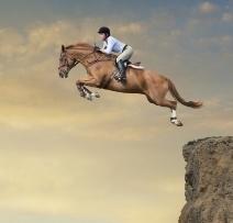 jumping_horse_case_study-933915-edited.jpg