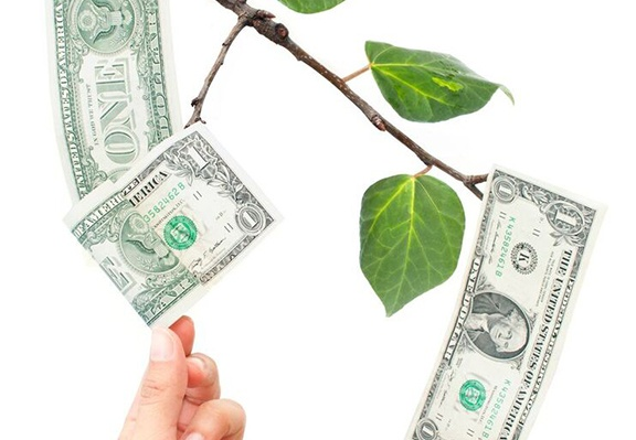 Dollar_Branch_1.jpg